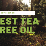 20 Best Tea Tree Oil for Hair and Skin in India 2021